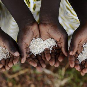 世界の食糧問題とは?子どもに深刻な栄養不良