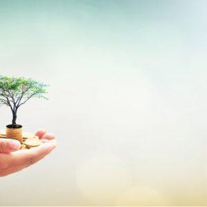 日本ファンドレイジング協会が行う社会貢献教育や活動を支援する方法は?
