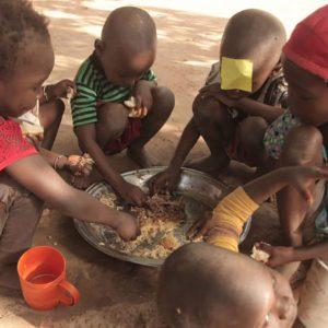アフリカの飢餓が深刻な理由は?飢餓率や原因、解決策、支援内容について解説