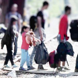 日本の難民認定率や世界との比較、難民のために行われている支援活動について知ろう!