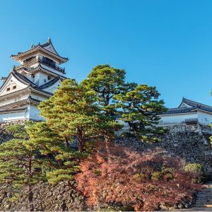 高知県で行われている貧困対策や取り組みは?