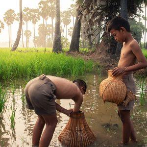 アジアの飢餓が子どもたちに及ぼす影響や対策、支援について解説