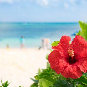 沖縄県で行われている貧困対策や取り組みは?