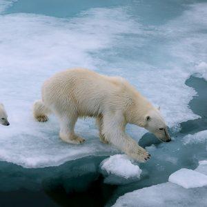 SDGsの目標13「気候変動に具体的な対策を」で解決するべき問題と現状とは