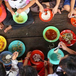日本政府が飢餓・食糧問題に対して行っている支援や取り組みは?
