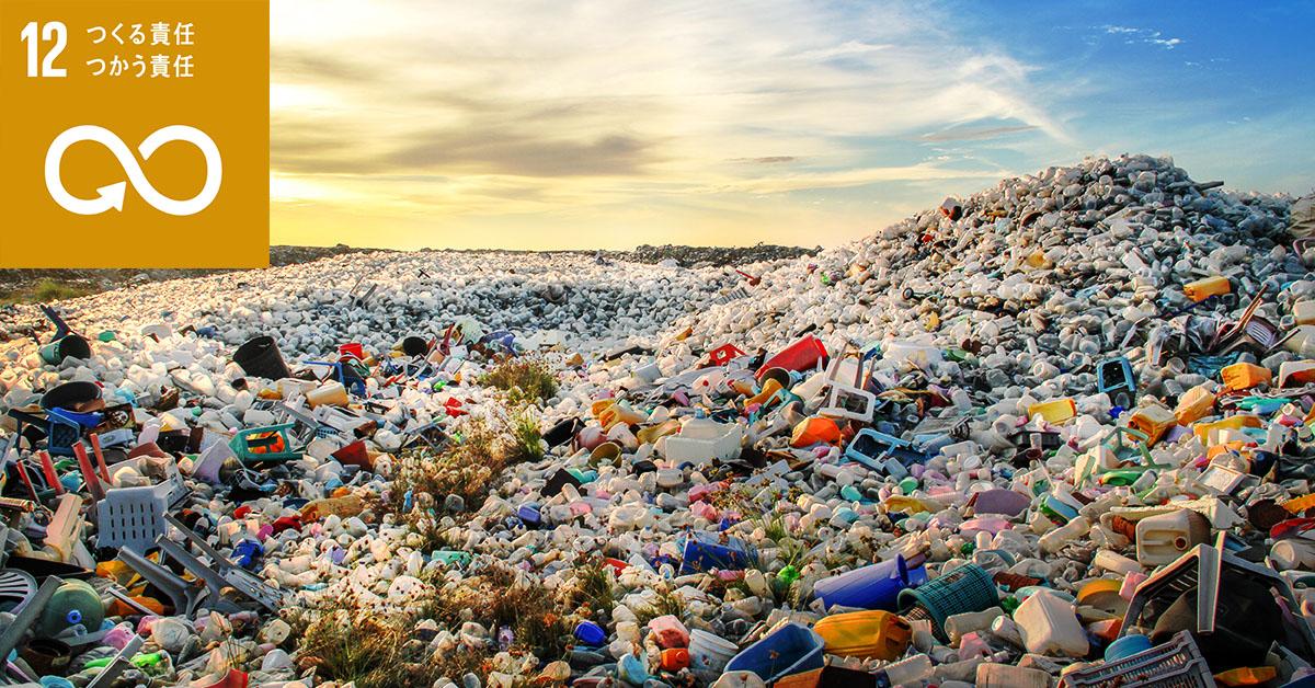 世界でも深刻なごみ問題とは?問題の原因や現状、リサイクルについて解説