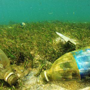 海洋プラスチックごみの問題への世界の対策や取り組みについて解説