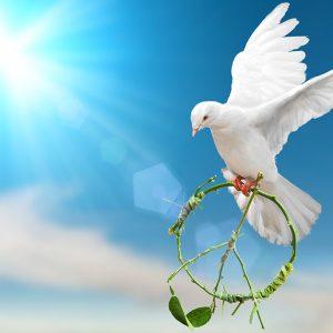 SDGs「平和と公正をすべての人に」で解決すべき具体的な問題とは?