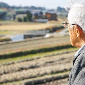 高齢者世代の貧困の現状は?男女で見られる格差とは