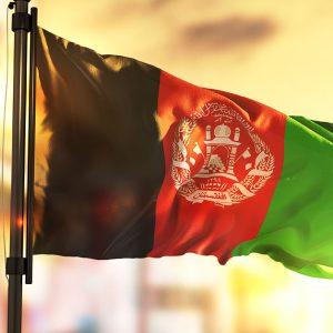 アフガニスタンで深刻化している飢餓の原因や必要な支援とは?