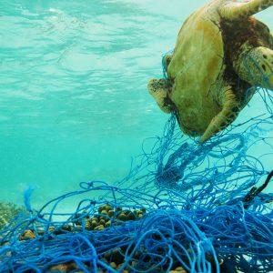 海洋プラスチックごみを削減するために日本が行っている取り組みは?