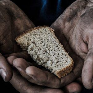 日本が行っている農業の支援とは?SDGs「飢餓ゼロに」への取り組みを紹介