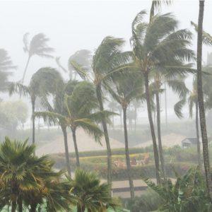 九州・沖縄地方で過去にあった台風・大雨による災害は?