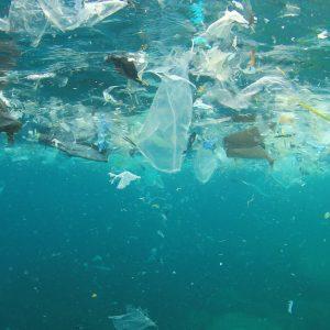 海洋汚染はなぜ起こる?原因や海洋環境に与える影響とは
