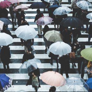 関西・中国・四国地方で過去にあった台風・大雨による過去の災害は?