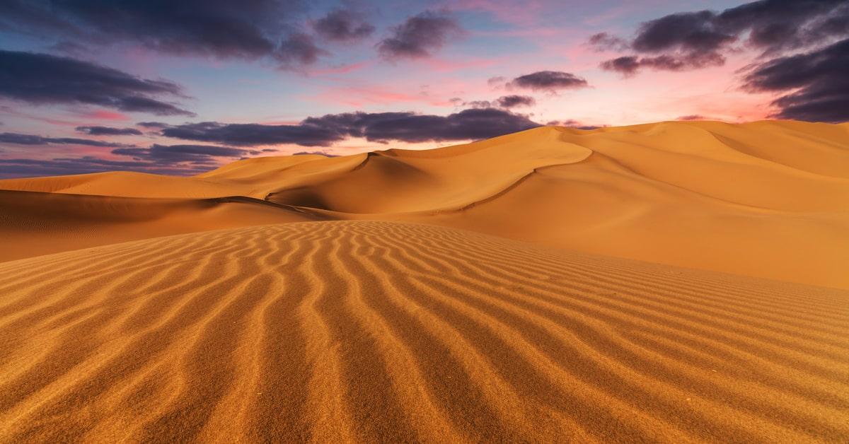砂漠化対処条約とは?内容や日本の取り組みとは