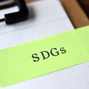 SDGsアクションプラン2020とは?内容や取り組みを解説