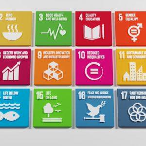 SDGsの達成度は?日本はどんな取り組みをしている?