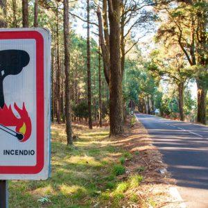 森林火災を鎮火するためにどんな消化方法が行われる?