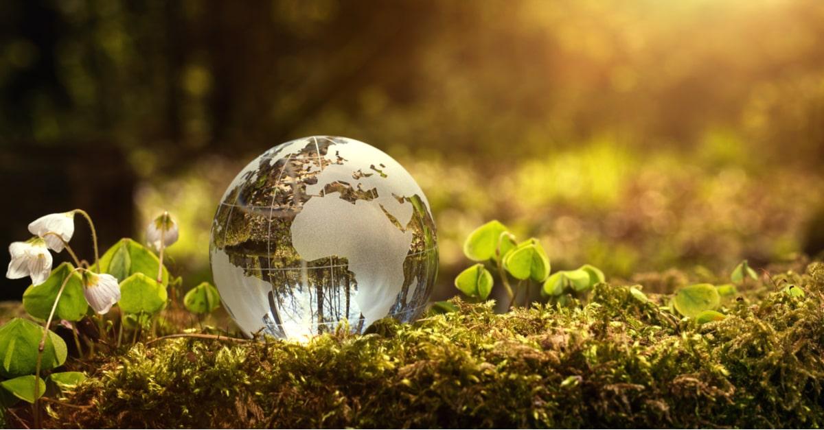 SDGsで重要なエコロジカル・フットプリントとは?