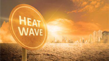 猛暑は災害?気候変動がもたらす影響は大きい