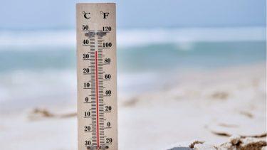 猛暑日の基準は?気候変動によって日数が増えている