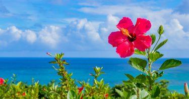 沖縄に来る台風について解説!旅行に適した時期は?