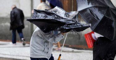 気象庁での台風予報の見方は?用語や警戒レベルについて解説