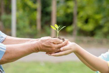 日本の子どもに寄付したい!おすすめNPO団体と選び方を専門家が紹介
