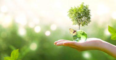 脱炭素社会に向けた日本の取り組みとは?クリーンエネルギーの普及も重要