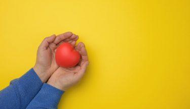 寄付をすると節税できる?おトクに寄付する6つのポイントを解説!