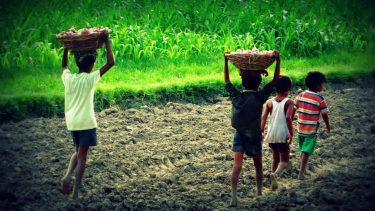 児童労働が起こる原因は?貧困問題と深い関係がある