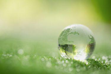 環境保護は寄付で支援できる!おすすめ団体を5つ紹介